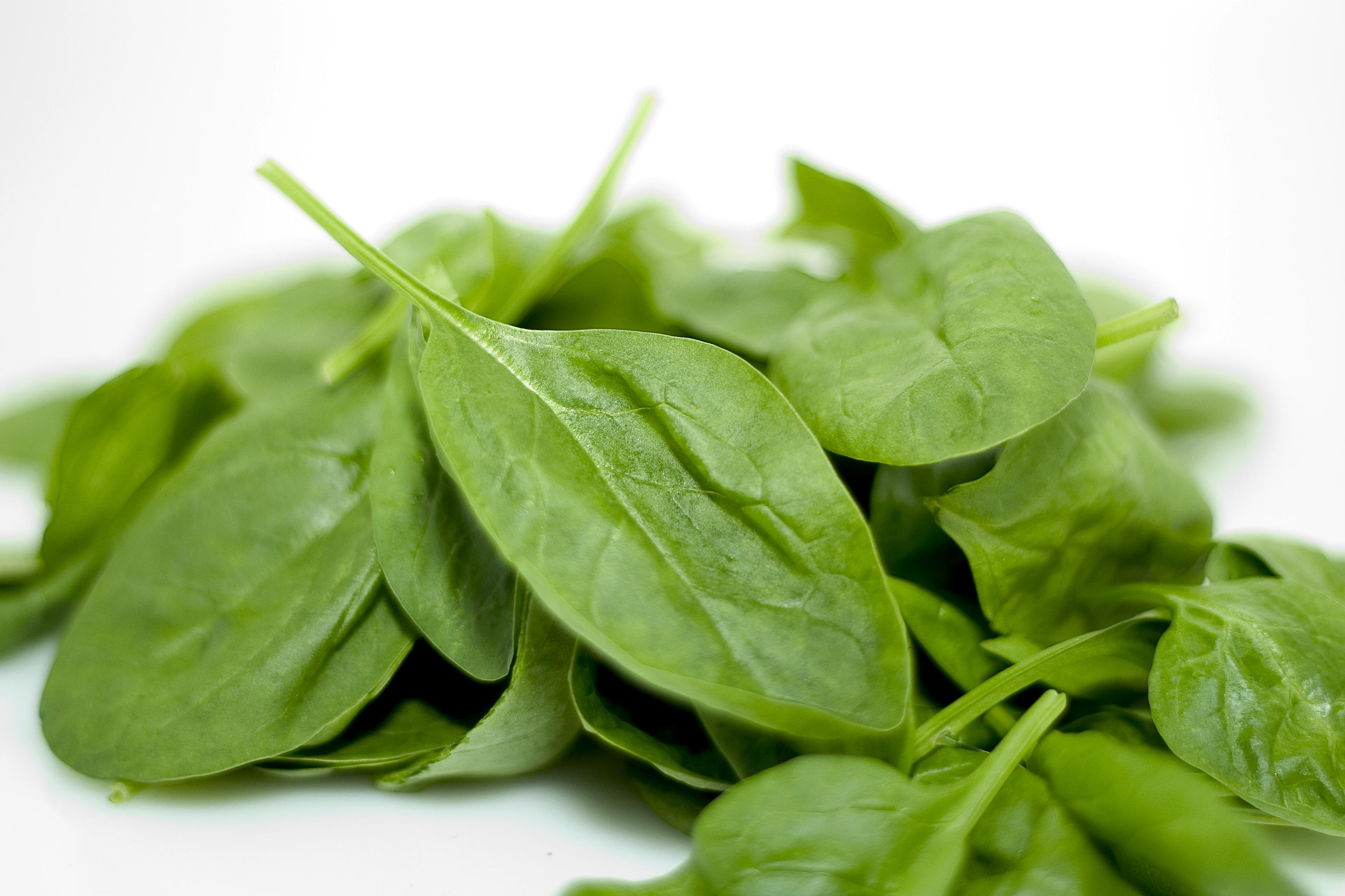 spinach-1322074