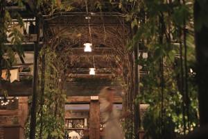 2014-09-8-Life-of-Pix-free-stock-photos-restaurant-new-york-secret-place-rooftop